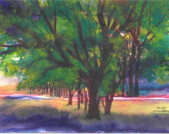 "Trees, Morning Light, Shadows,Bright Colors,Glowing,Landscape,Sunlight,Fine Art Giclee 6.5"" x 9"" by Janet Dosenberry Print by"