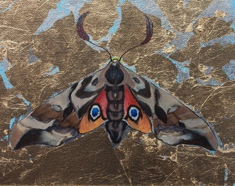 Brown, Red, Yellow and Black, Hawkmoth, Sphinx Moth, Painted on Gold Metal Leaf, Original Painting by Clair Hartmann