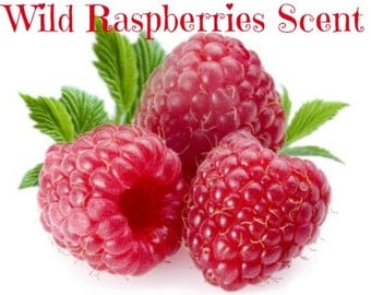 WILD RASPBERRIES Scented Soy Wax Melts - Tarts - Fresh Fruit - Berry - Wickless Candle - Air Freshener - Highly Scented - Hand Made
