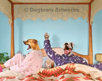 Yawn, large original photograph of dogs wearing clothes and yawning as they get out of bed