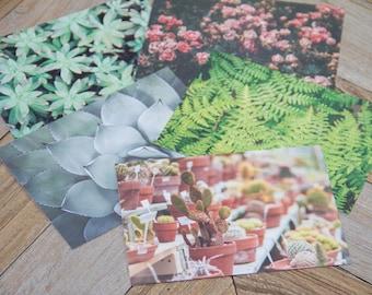 CLEARANCE SALE, Nature Photography Postcard Set, Set of 5 Postcards, Abstract Nature, Nature Photography, Dreamy Photography, Succulent