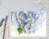 Hydrangea Photo Notecard - Blue Hydrangea Note Card, Stationery, Floral Photo Notecard, Blank Notecard