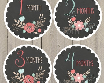 FREE GIFT, Monthly Baby Girl Stickers, Baby Month Stickers, Milestone Stickers, Monthly Photo Prop Chalkboard Floral Nursery Decor Baby Girl