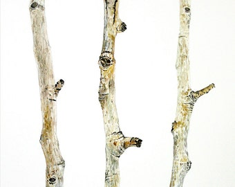 Watercolor Branches Print- Watercolor Print- Rustic, Winter- Brown, Grey, White- Aspen Tree Branches, Home Decor