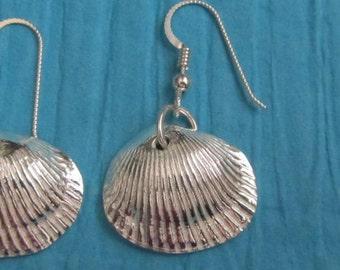 Fine Silver Shell Earrings