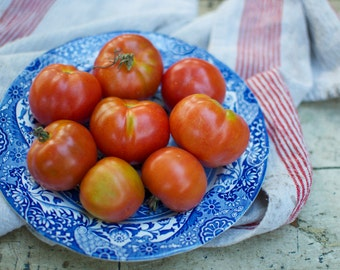 Stupice Heirloom Tomato Plant Seeds