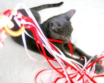 Wooden Cat Toy - Ribbons - Wooden Ring - Cat Teaser - Dancing Ring