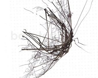 Industrial   Butterfly Wings - hand drawing - artwork - Art Print - Insect - Black and White - Floral Graphics - Geometrical Details