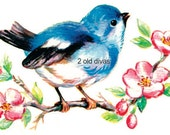 Cheery Vintage Style Blue Birds - Your Choice - Waterslide Decal or Inkjet Heat Transfer