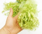 Hand dyed Teeswater wool locks lime fall green  50 gr for Doll Hair - Blythe Doll Hair ,  Art Dolls,  , spinning and felt
