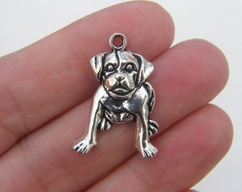 6 Dog charms antique silver tone D23