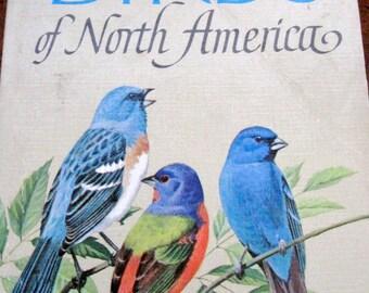 BIRD WATCHING! Birds of North America vintage book 1966