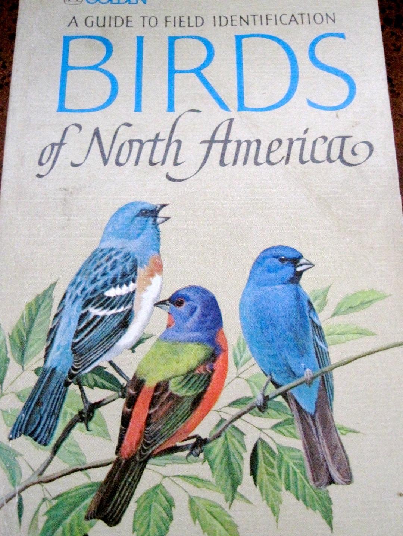 north american bird books reviews