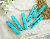 Mint & Plum (Green/Purple) Distressed Mini Clothes Pins - Shabby Chic 6 Pack