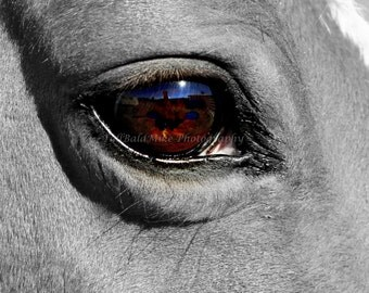 Those Misty Eyes 8x10 Fine Art Print