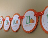 READY to SHIP Pumpkin Collection: Just Born/0-12 mos Picture Banner. Pumpkin First Birthday Banner. Orange. Harvest. Fall. Autumn.