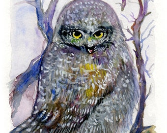 Original Watercolour painting Owl