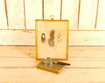 Handmade vintage framed feathers/vintage wall hanging/bird feather picture