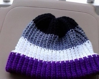Asexual Pride Knit Hat