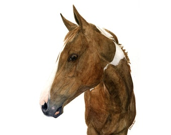 Custom Horse Portrait Painted from your Photos- Original Watercolor Painting by C.Raven -10x8inches