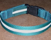"""1"""" Glow-in-the-Dark Trimmed Dog Tag Collar"""
