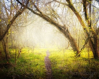 This Way - PHOTO, enchanted forest, fairy tale, rustic foggy woodland decor