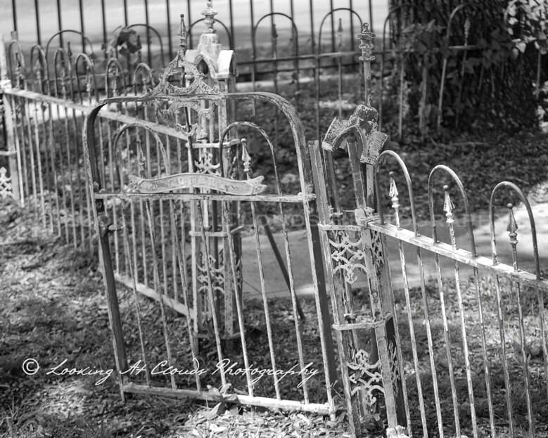 Antique Wrought Iron Garden Gates