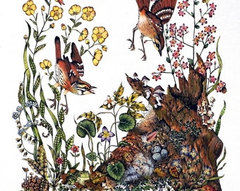 Watercolor Painting Print , Bird Art,  Bird Print, Woodland Art