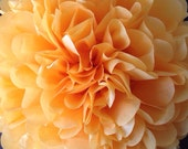 Peach Tissue Paper Pom Poms - Baby Shower - Fall Colors - Decoration - Wedding - Nursery - Bridal Shower - Birthday Party Decor