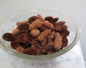 Pinecones for a Rustic Wedding Theme 100