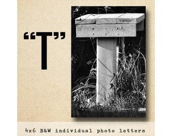 Letter T Alphabet Photography Black & White 4x6 Photo Letter