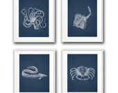 Nautical/Sea Creature Animal Prints on Antiqued Navy - 8x10 - Perfect for Nursery/Child's Room or Powder Room