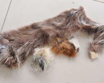 Real Tanned Raccoon, Red Fox and Swift Fox Hide Pieces