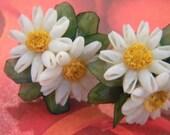 Daisy Seashell Vintage Screwback Floral Earrings