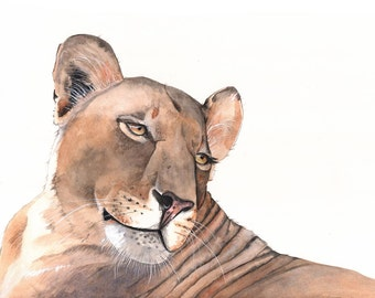 Lioness Watercolor painting- wildlife art- PRINT of watercolor painting A4 size