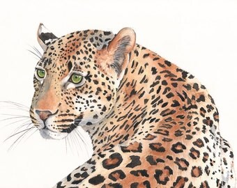 Leopard Watercolor Painting- animal art- print of watercolor painting A4 size leopard art- big cat art