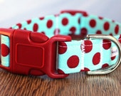 Red and Aqua Polka Dot Dog Collar - Red Dog Collar - Aqua Dog Collar - Polka Dot Dog Collar - Bright Dog Collar