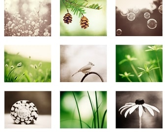 Green Brown Print Set - beige cream nature photographs set of 9 nine modern gallery wall art colorful photos botanical photography fine art