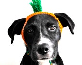Carrot Costume for Dogs - Custom Sizing - Hand Knit Dog Hat - Dog Halloween Costume