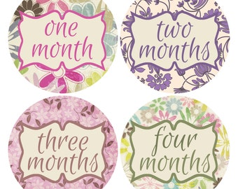 Flower Baby Stickers, Pink and Purple Monthly Stickers, Baby Photo Props, Bodysuit Month Stickers (206)