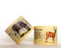 MINI 5M Animal Encyclopedia Washi Tape