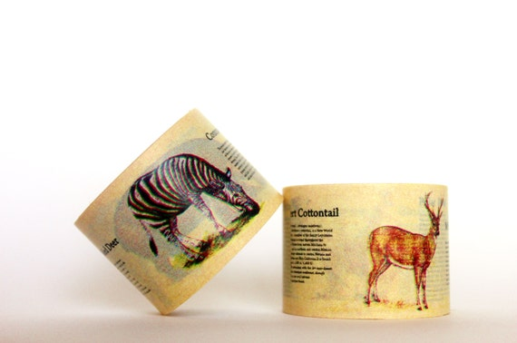 MINI 5M Animal Encyclopedia Washi Tape