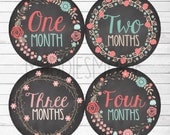 Monthly Baby Stickers Baby Girl Month Stickers Milestone Stickers Monthly Photo Stickers Chalk Board Flowers (Floral Wreaths 4)