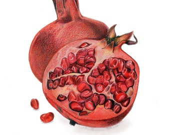Original Illustration - Pomegranates - Colored Pencil - Red - Unique