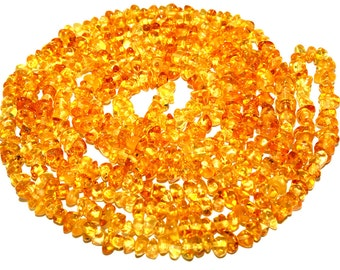 Baltic Amber  Necklace Polished Baltic Amber