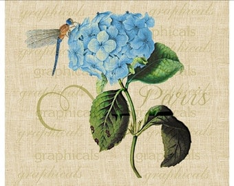 Blue hydrangea dragonfly printable graphic download clip art image for Iron on fabric transfer burlap decoupage pillow card tote bag No 2087