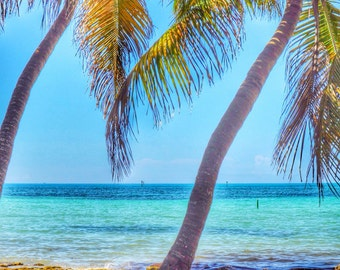 Oceanside Key West Vibes HDR Palm Trees Tropical Florida