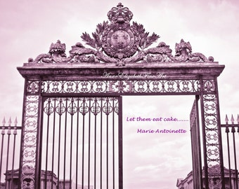 Paris Photograph, 8 x 10- Fine Art, Pink, Let them eat cake,Marie Antoinette,Fashion ,Purple, Iron Gates, Princess,Nursery,Paris Quote,Color