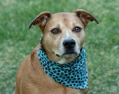 Teal and Brown Paw Prints Dog Bandana
