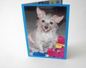 Dog Photo Card, Fun Dog Card, Pet Greeting Card